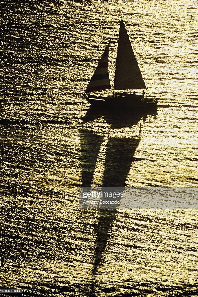 CATAMARAN SAILING AT SUNSET & REFLECTION : Foto de stock