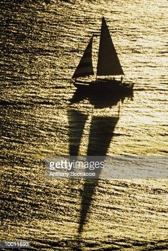 CATAMARAN SAILING AT SUNSET & REFLECTION : Stock-Foto