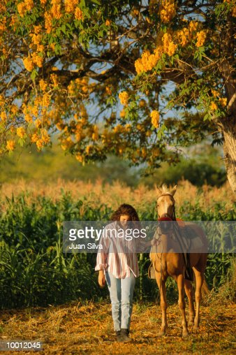 YOUNG WOMAN WALKING HORSE BY CORN FIELD : Foto de stock