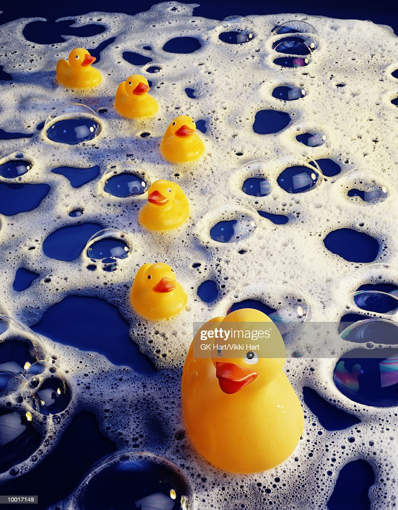 YELLOW RUBBER DUCKS IN A ROW IN BUBBLES : Stock Photo