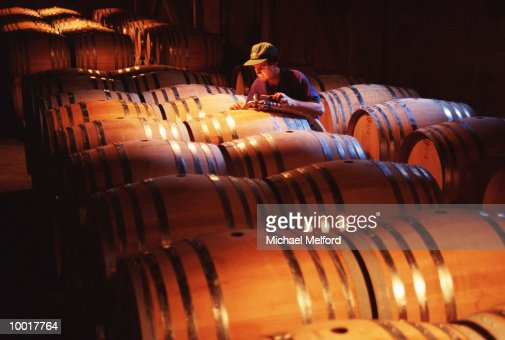 AGING WINE IN BARRELS IN NAPA VALLEY, CALIFORNIA : Stockfoto