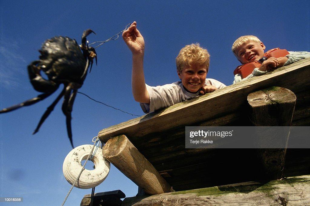 BOYS CRAB FISHING IN NORWAY : Stockfoto