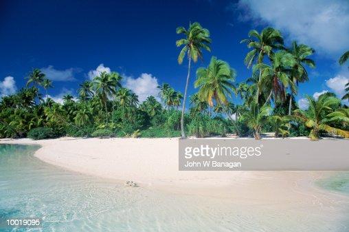BEACH IN AITUTAKI ON THE COOK ISLES IN POLYNESIA : Stock Photo