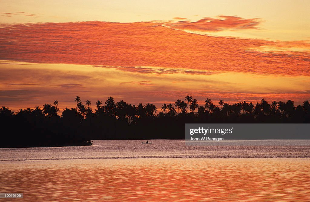 COCONUT TREES AT SUNSET IN WEST SAMOA IN POLYNESIA : Stockfoto