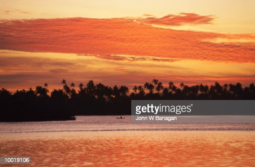 COCONUT TREES AT SUNSET IN WEST SAMOA IN POLYNESIA : Stock Photo