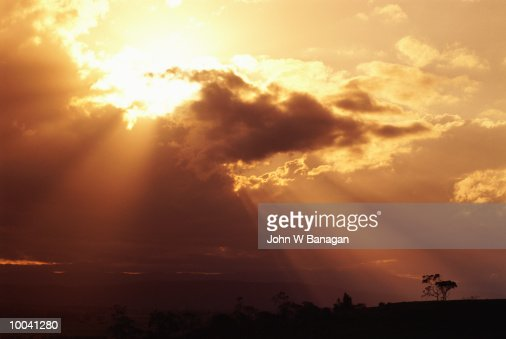 CLOUDS WITH SUN RAYS & TREES IN LANDSCAPE : Stock Photo