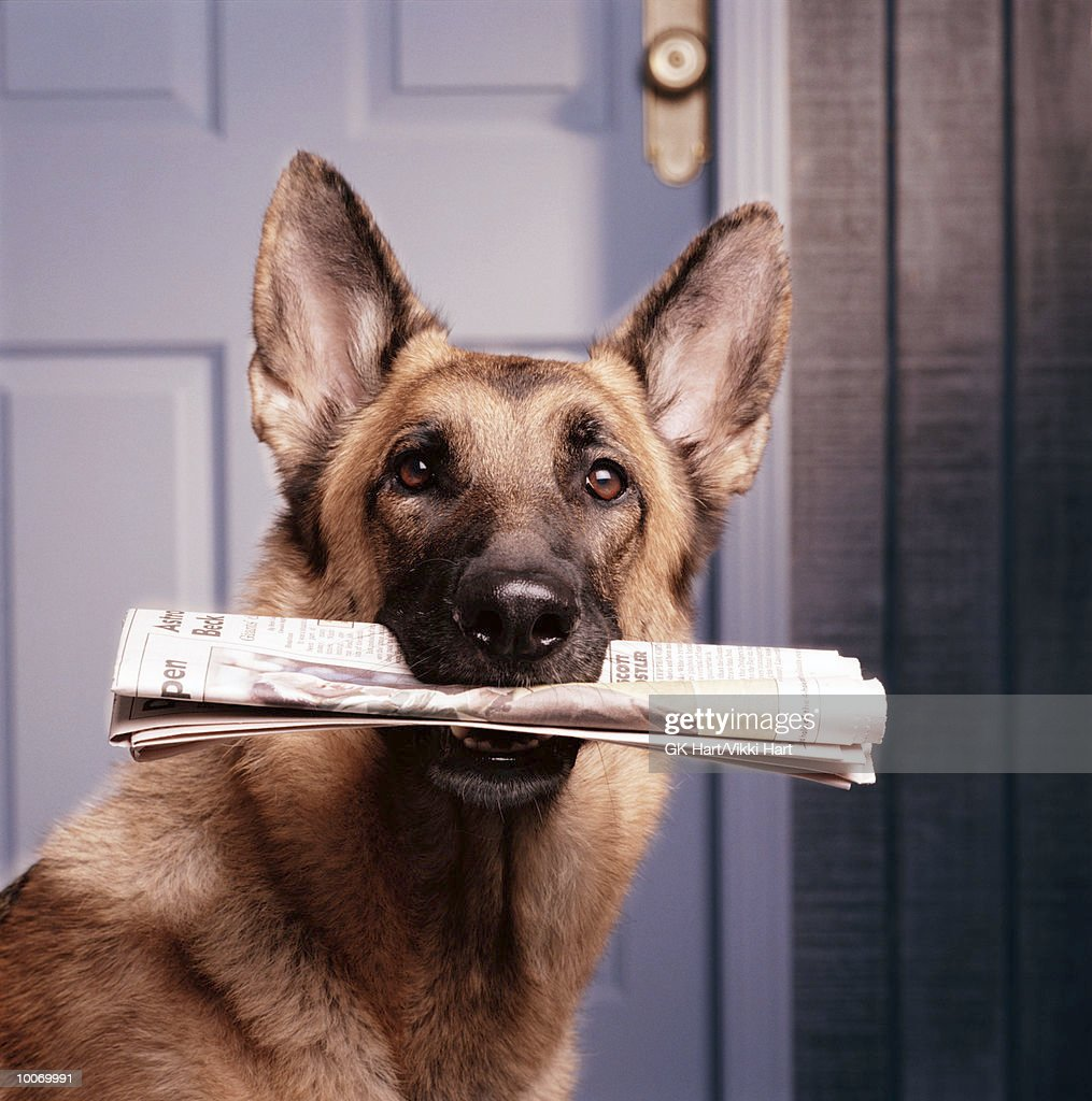 HOLDING NEWSPAPER : Stock Photo