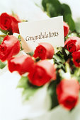 DOZEN RED ROSES, CONGRATULATIONS