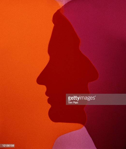 OVERLAPPING SILHOUETTE PROFILES