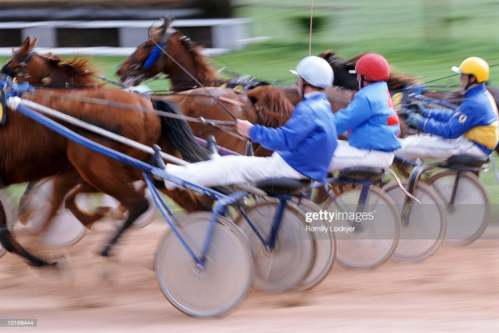 TROTTING, HORSE RACE, NORMANDY, FRANCE : Stock Photo