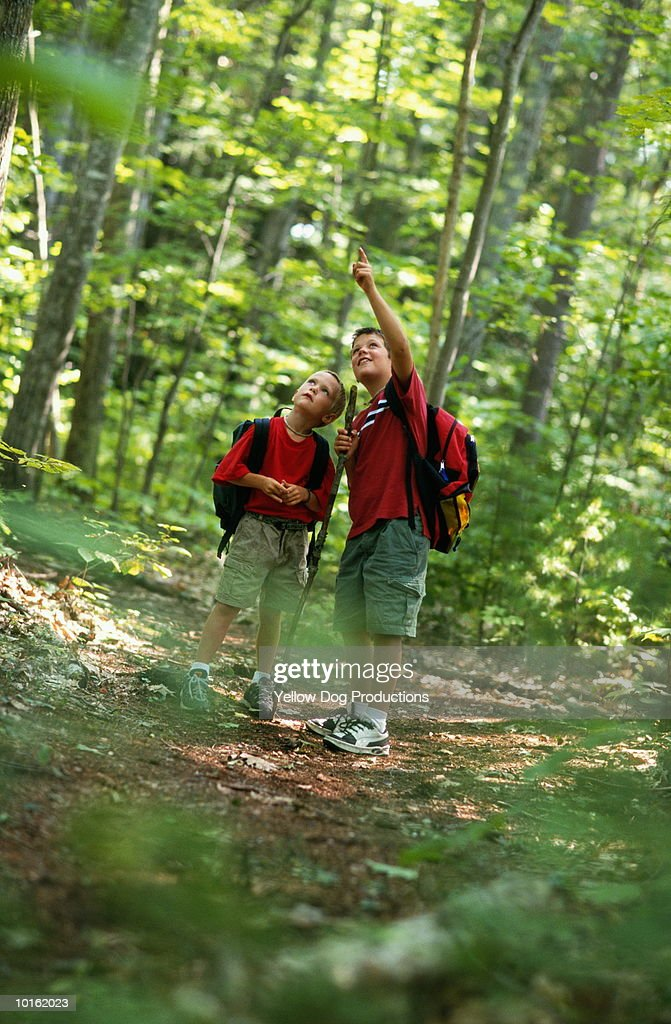 BOYS ON HIKE IN THE WOODS : Stock Photo
