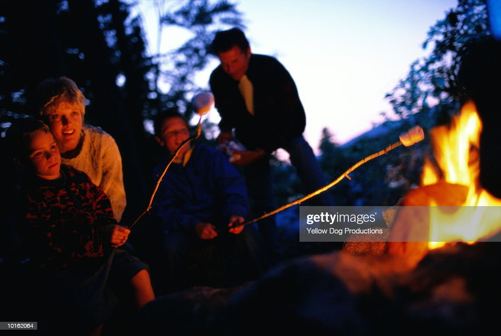 ROASTING MARSHMALLOWS BY THE CAMPFIRE : Stock Photo