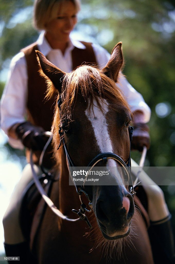 MATURE WOMAN RIDING HORSE : Stock Photo