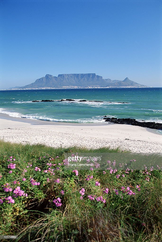 TABLE MOUNTAIN FROM BLOUWBERG BEACH, SOUTH AFRICA : Stockfoto