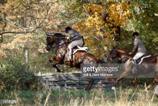 RIDERS JUMPING FENCE, ON FOXHUNT, VIRGINIA : Stock Photo