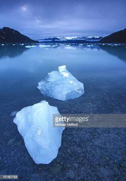 ICEBERGS IN GLACIER BAY, ALASKA