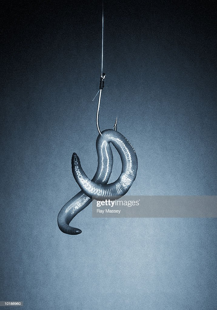 WORM ON HOOK (TONED B&W)