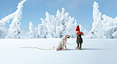 ELF DECORATING DOG WITH CHRISTMAS LIGHTS
