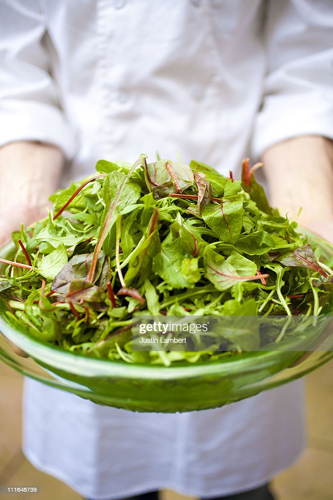 CHEF HOLDING PLATE OF VERDANT GREEN SALAD : Stock Photo