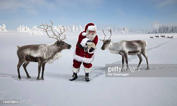 SANTA CLAUSE SHOWING TWO REINDEER A MAP