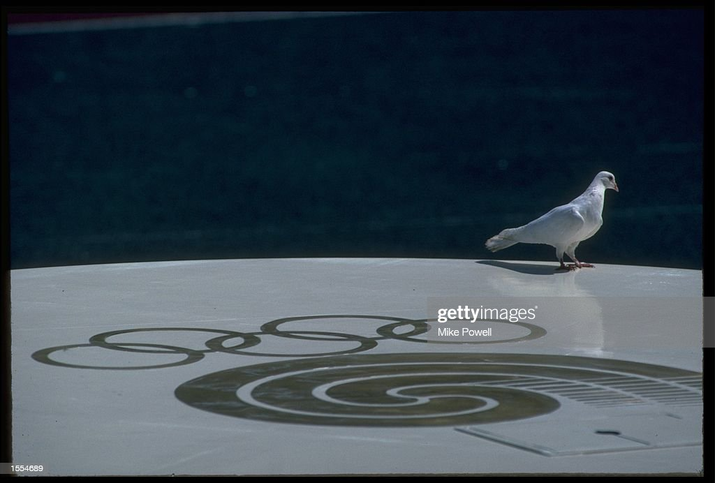 A SINGLE DOVE LANDS UPON THE OLYMPIC SYMBOL DURING THE OPENING CEREMONY OF THE 1988 SEOUL OLYMPICS