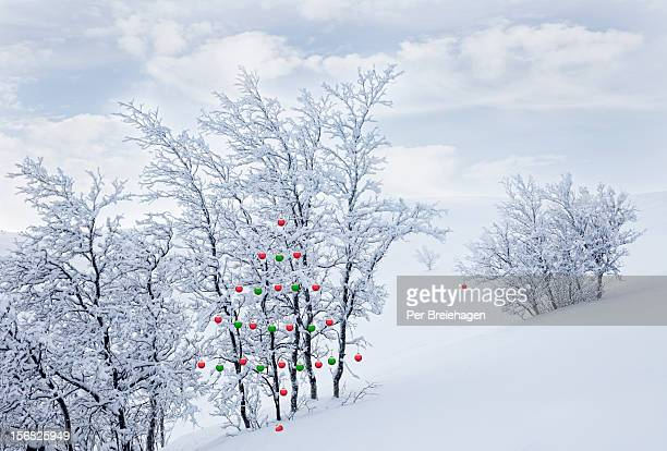 CHRISTMAS ORNAMENTS IN THE MOUNTAINS