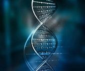 DNA 02