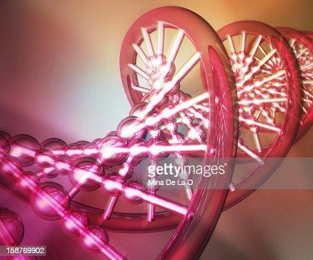 DNA 03 : Stock Photo