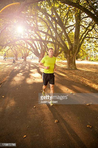 MAN RUNNING IN PARK THROUGH THE TREES