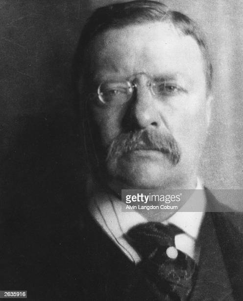 Theodore Roosevelt the 26th President of the United States Photogravure from 'Men of Mark' published 1913