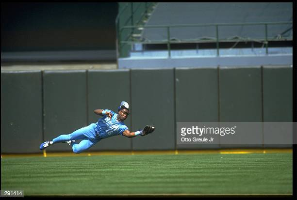 KANSAS CITY ROYALS OUTFIELDER BO JACKSON MAKES A DIVING CATCH DURING THE ROYALS VERSUS OAKLAND A''S GAME AT OAKLAND COUNTY STADIUM IN OAKLAND...