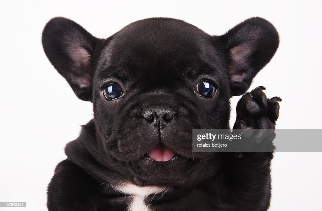 HELLO!! : Stock Photo