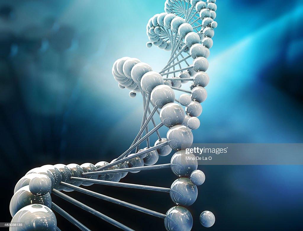 DNA WHITE