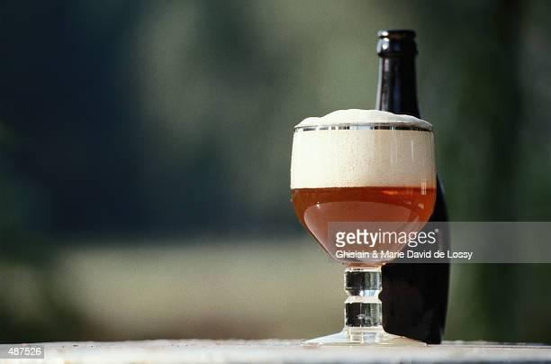 GLASS OF BEER WITH FOAMY HEAD AND BOTTLE