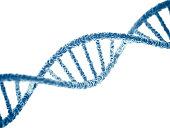 DNA on white background. 3D render.