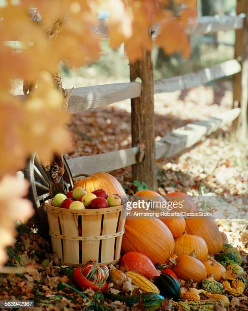 AUTUMN STILL LIFE BY...