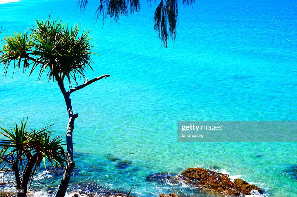 VIEWS FROM COOLUM : Stock Photo