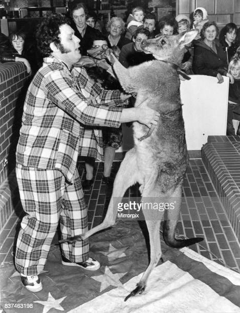 Kangaroo Skippy the boxing kangaroo made the C R Homeworld Talbot Green sale go with a punch at the weekend Children screamed with delight as Skippy...