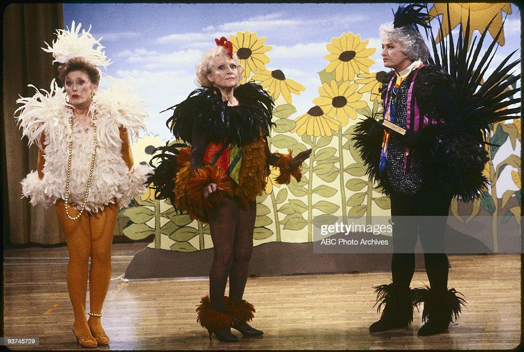 THE GOLDEN GIRLS - 9/24/85 - 9/24/92, RUE MCCLANAHAN, BETTY WHITE,, BEA ARTHUR