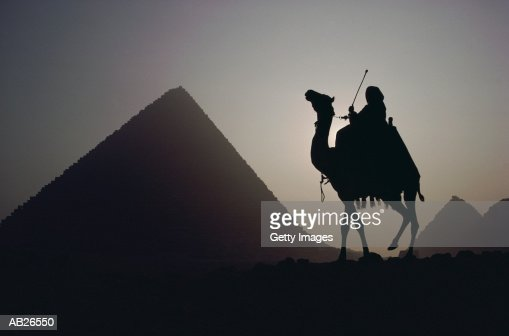 GREAT PYRAMID AND CAMEL, GIZA, EGYPT : Stock Photo