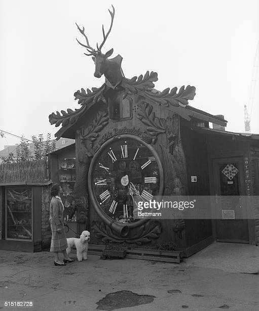10/12/56Wiesbaden Germany The world's biggest cuckoo clock attracts tourists every time they come here A smart business man gave his little shop...