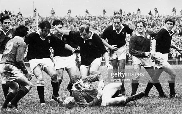 The British Lions team take on Wellington during their tour of New Zealand British Lion Willie John McBride falls to the ground after being tackled...