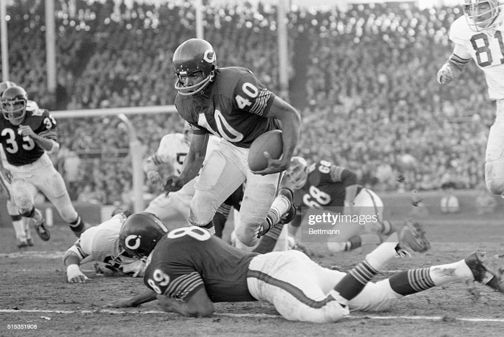 Chicago, IL- Chicago Bears RB Gale Sayers (40) finds an open spot and leaps over teammate, Bob Wallace (89), rushing for 20 yards in the 2nd quarter of the game with the Cleveland Browns. The Browns grabbed the title in the NFL Century Division with a 28-24 victory over the Bears.