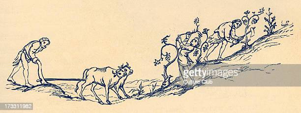 11th century agriculture in England Illustrations of various techniques 19th century illustration