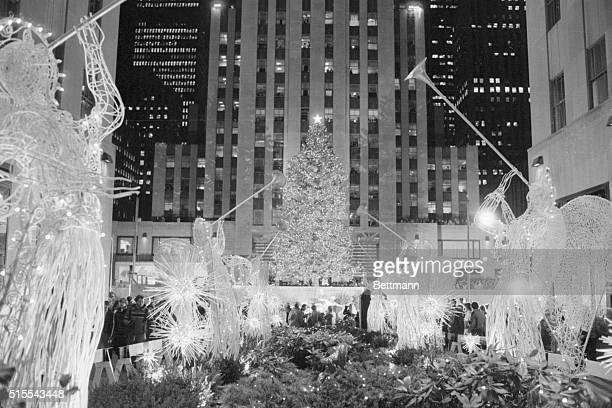 12/7/1981New York New York The 1981 Rockefeller Center Christmas tree is lighted during a ceremony here Today's ceremony marked the 49th annual...
