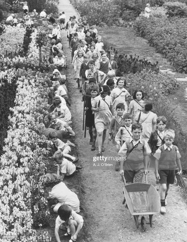 Children gardening during their holiday's at a school in Cobham Surrey