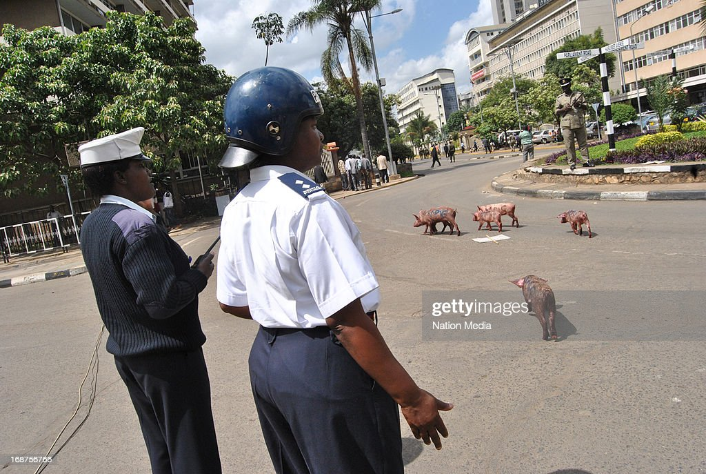 Police stand outside parliament during a pig protest on May 14, 2013 in Nairobi, Kenya. Protesters released a pig and about a dozen piglets outside parliament to show their anger at newly elected MPs demanding higher salaries.