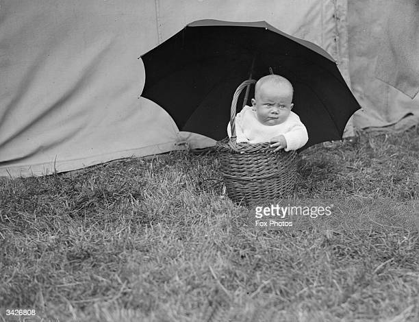A chubby toddler sitting in a basket under an umbrella at a Baby Show in Catford South London