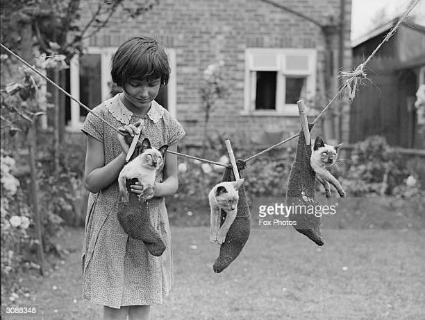 A little girl hangs three Siamese kittens on a washing line in a garden in Croydon London