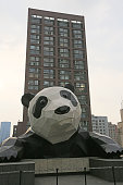 A 15metertall panda sculpture hangs on the Chengdu IFS building on July 25 2016 in Chengdu Sichuan Province of China The 15metertall giant panda...